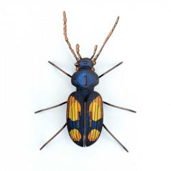 Insecte Chatouillus en carton, jeux de construction - Agent Paper - dessus